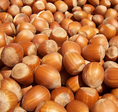 Hazelnuts Nutrition Facts Health Benefits - Nutrition Ftempo